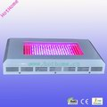 300W LED Grow Lighting, with 10,080lm Lumens, 100% Red Color,630;red:blue=8:1; Replacing 800-1000W MH/HPS Light